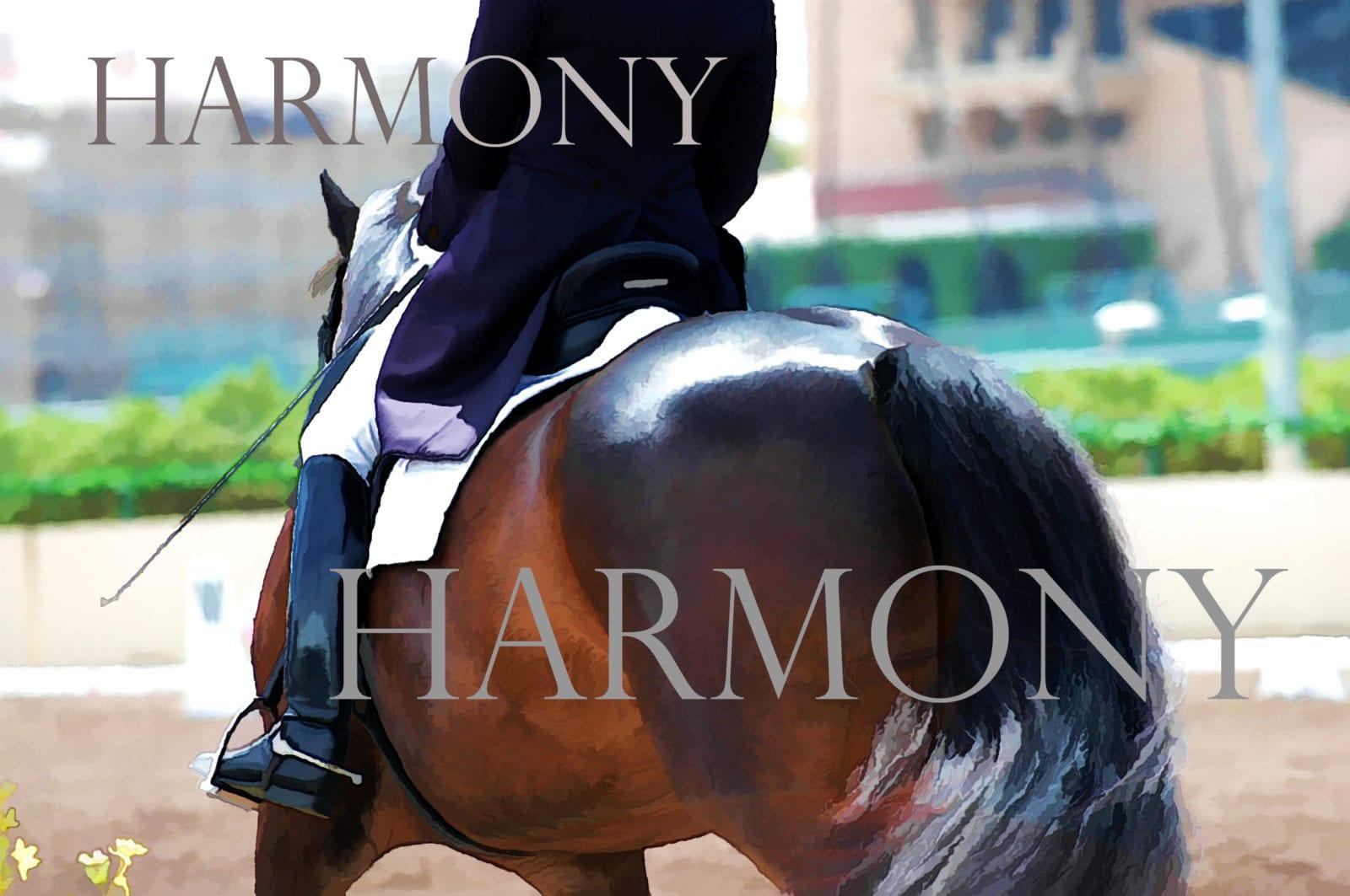 Dressage-Harmony